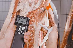 HACCP Responsabile industria alimentare